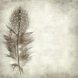 texturerat gammalt papper för bakgrund Fotografering för Bildbyråer