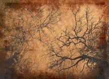 Textures abstraites de centrales Photographie stock