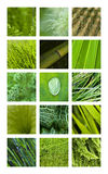 Textures and backgrounds Stock Images
