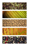 Textures and backgrounds Royalty Free Stock Photography