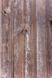 Textures - bois Image stock