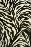 Textures colorées de tigre Images libres de droits