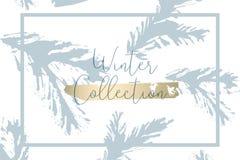 Textures d'hiver de vecteur de peinture de cône d'arbre de Noël Illustration Stock
