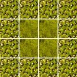 Textures de kiwi à l'intérieur des formes carrées disposées comme fond Image stock