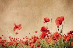 Textures de papier de fleur. Photo libre de droits