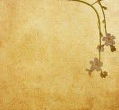 Textures de papier de fleur. Photographie stock