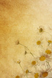 Textures de papier de fleur. illustration stock