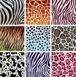 Textures de peau animale illustration stock