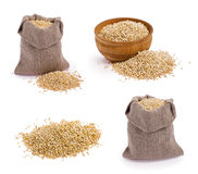 Textures de quinoa Image stock