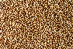 Textures des grains crus de sarrasin Nourriture saine Vue supérieure Photos libres de droits