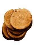 Textures el roble del árbol Imagenes de archivo