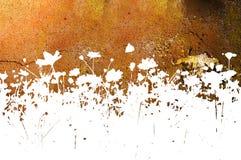 Textures et milieux abstraits de fleur Images libres de droits