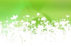 Textures et milieux abstraits de fleur Photographie stock