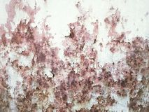 Textures grunges Image stock