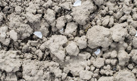 Textures land soil with cracks Royalty Free Stock Images