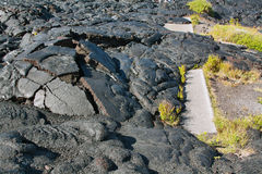 Textures of lava in Hawaii Stock Images