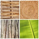 Textures naturelles photos stock