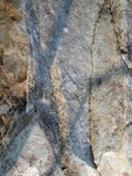 Textures normales réelles 1 de pierre Images stock
