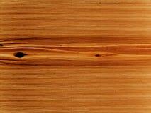 Textures o linden da árvore Foto de Stock Royalty Free