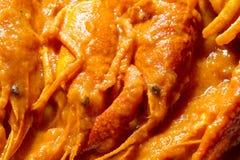 Textures o molho de tomate das lagostas Fotografia de Stock