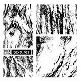 Textures set-03. Tree bark textures set  on white background. Vector collection Stock Photos