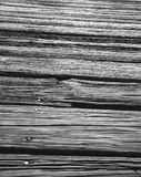 textures trä Royaltyfri Foto