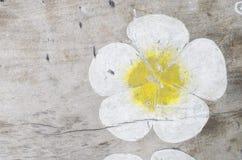 textures trä Arkivbild