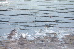 textures trä Arkivfoton