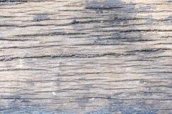 textures trä Royaltyfri Bild