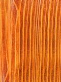 Textures  tree   pine Stock Image