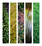 Textures Royalty Free Stock Images