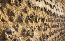 Textures. Of a wall in Old Souk, Dubai, UAE Royalty Free Stock Photo