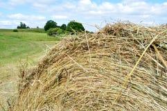 Texturice alrededor de granja seca secada natural del pueblo de la hierba seca de la paja del pajar contra las nubes de un cielo  fotos de archivo libres de regalías