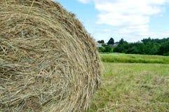 Texturice alrededor de granja seca secada natural del pueblo de la hierba seca de la paja del pajar contra las nubes de un cielo  fotografía de archivo