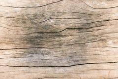 Texturice la madera vieja, fondo de madera superficial sucio, madera dura Fotos de archivo