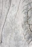 Texturice la madera vieja, vintage de madera del estilo del fondo, modelo de madera Foto de archivo libre de regalías