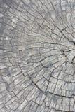 Texturice la madera vieja, vintage de madera del estilo del fondo, modelo de madera Fotografía de archivo libre de regalías