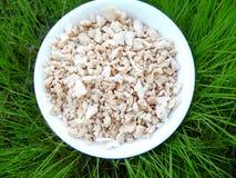 Texturized Plantaardige Proteïne in Gras Royalty-vrije Stock Foto's