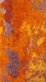 Texturrost på mång- färg för stål Royaltyfri Bild