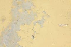 Texturstuckaturvägg Arkivbild
