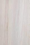 texturträ Royaltyfria Foton
