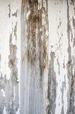 Texturwhiteboard royaltyfria foton