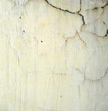 Textuur 3 van de muur Stock Afbeeldingen
