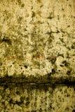 Textuur 49 Stock Afbeeldingen