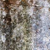 Textuur of achtergrondmuur van sjofele verf en pleisterbarsten Stock Foto
