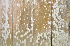 Textuur & de achtergronden van muur grunge de abstracte houten planken Stock Afbeelding