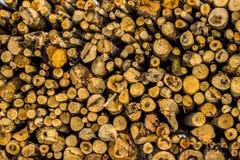 Textuur door een stapel van vers besnoeiingshout dat wordt gemaakt Royalty-vrije Stock Afbeeldingen