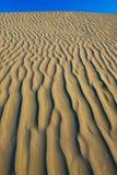 textuur in een zandduin Stock Foto's