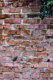Textuur en achtergrond (bakstenen muur) Stock Foto