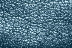 Textuur gekleurde huid Stock Afbeeldingen